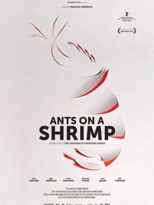 Urban Boutiq - Ants on a Shrimp