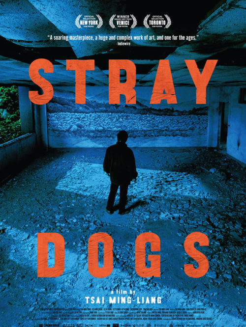 Urban Boutiq - Stray Dogs